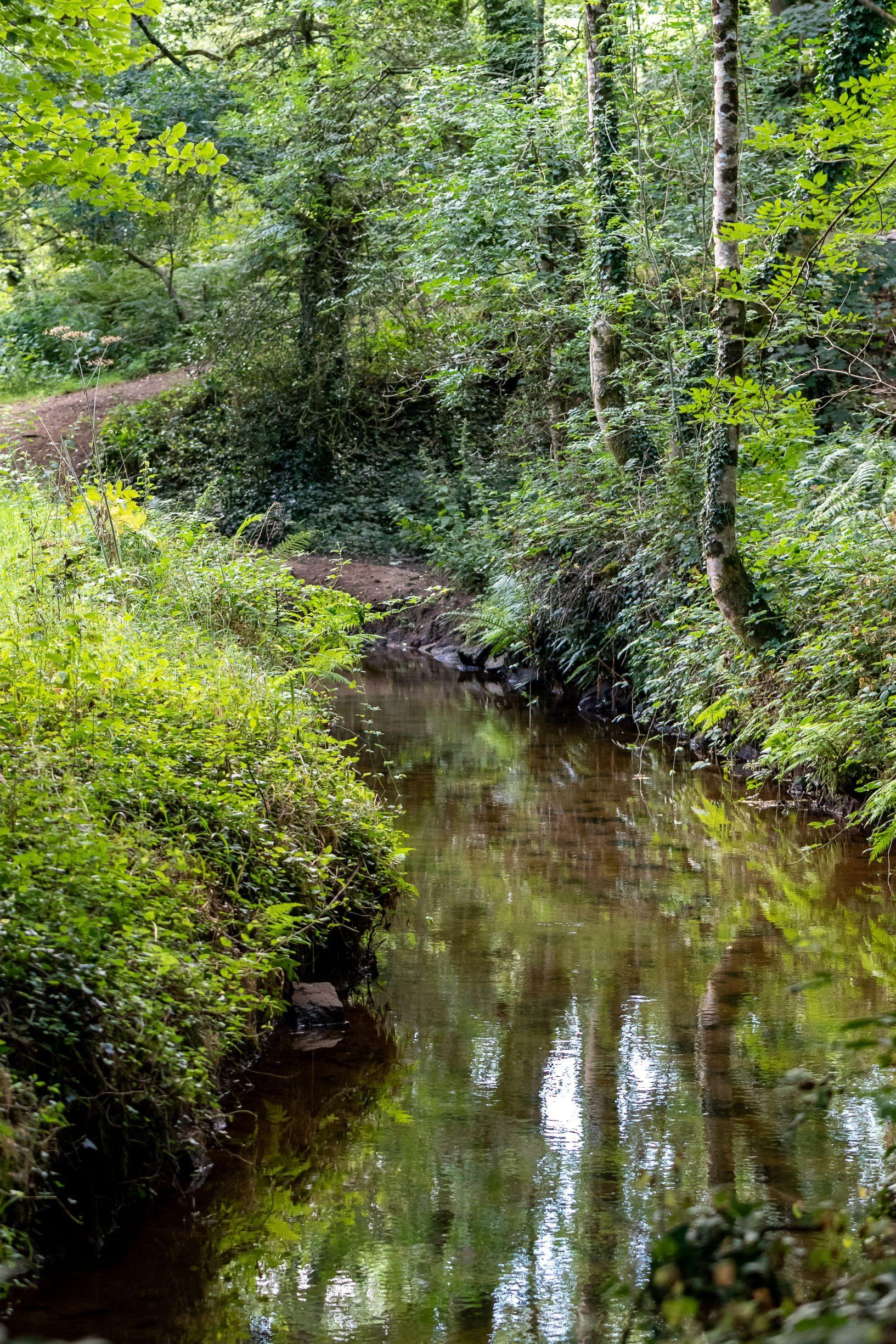 Hike of Pont-Bihan
