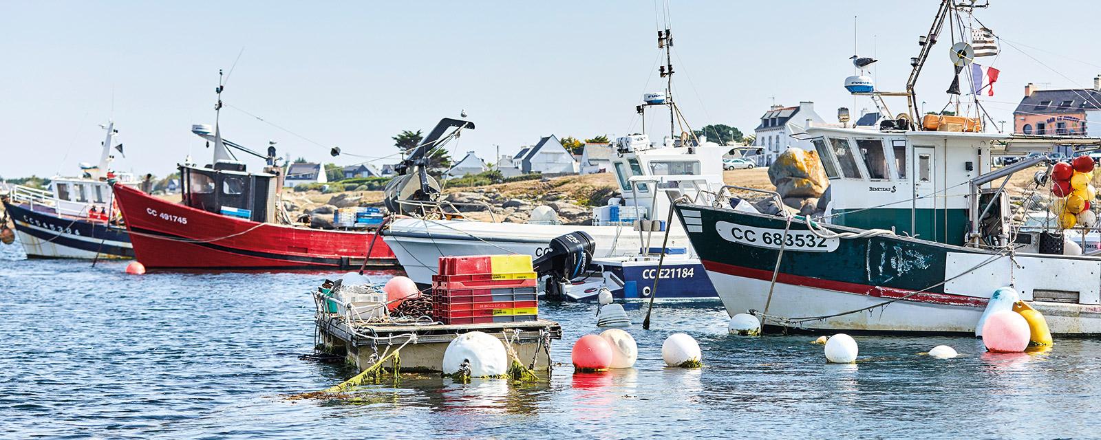 Les bateaux de pêches, fidèles au poste !