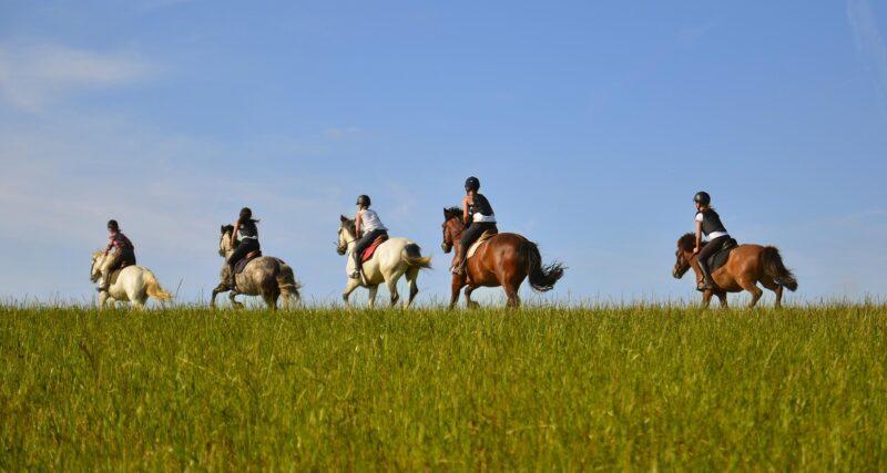 Le ranch de Rospico