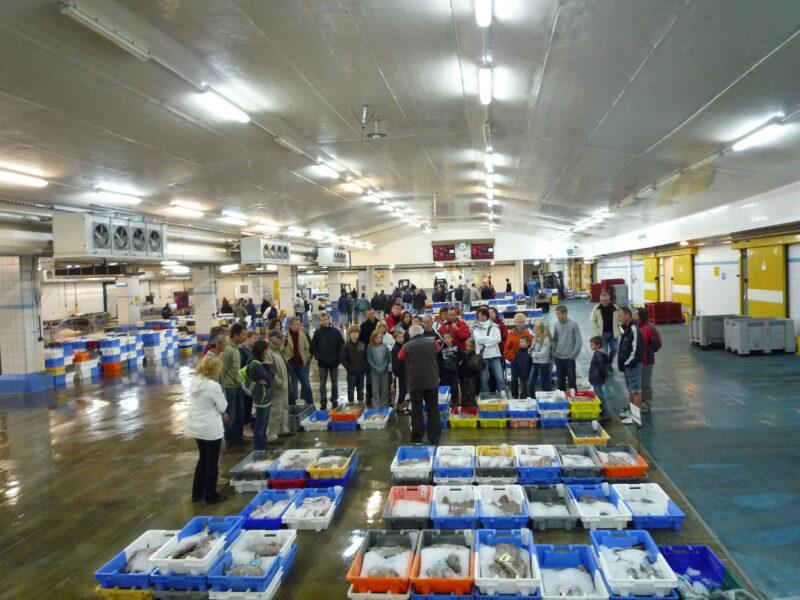Haliotika – La cité de la pêche