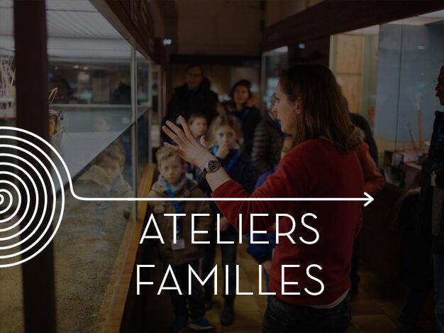 Mardi en famille, Concarneau, Port de Pêche