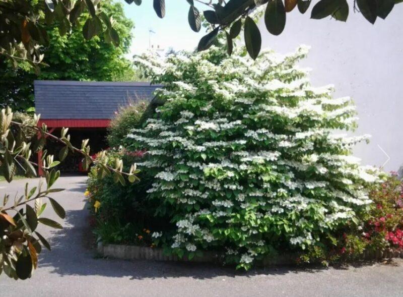 «Chambre dans un jardin» Annick Durand