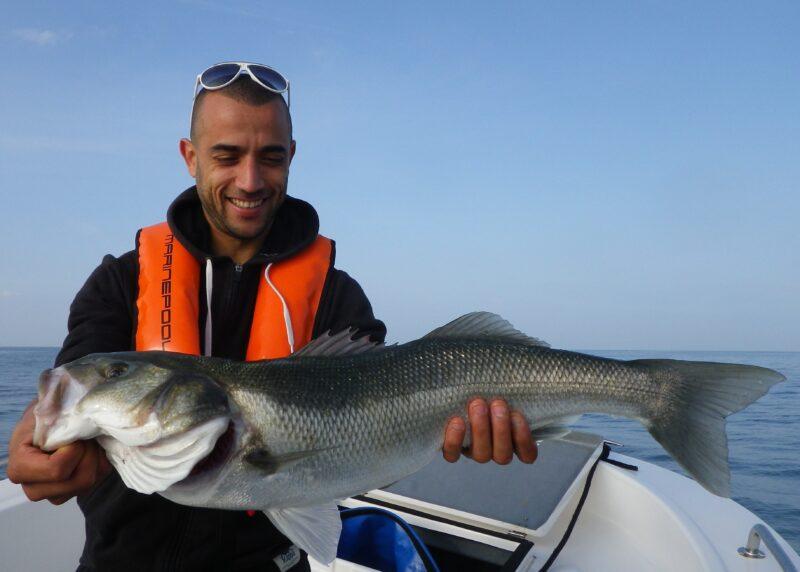 Allons pêcher !
