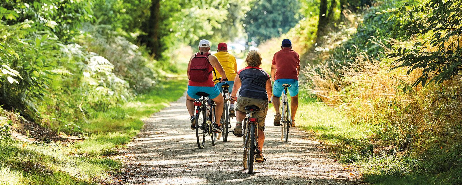 Mountain bike route of Locjean