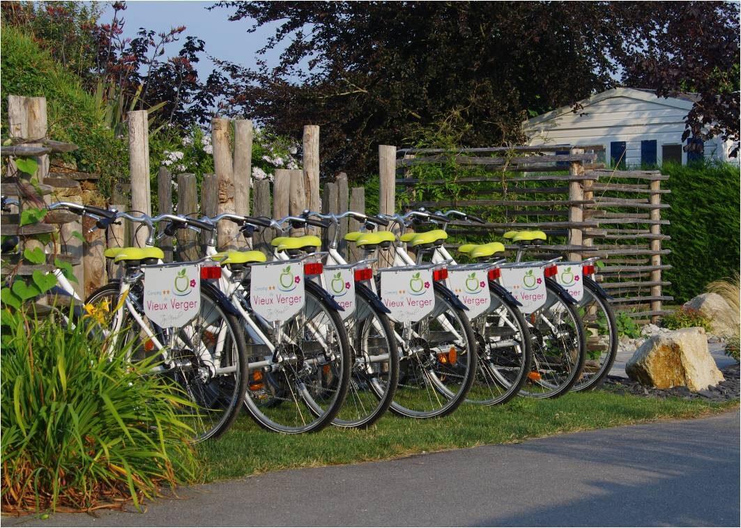 Location de vélo – camping du vieux verger